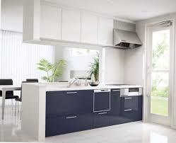 Cream Kitchen Cabinets With Blue Walls Blue Kitchen Cabinets Pinterest Home Design Ideas