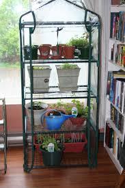 Garden Greenhouse Ideas Garden Greenhouses For Sale Home Outdoor Decoration