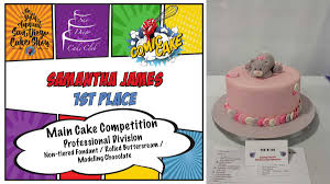 2017 show u0026 competition san diego cake show
