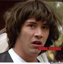 I Like Turtles Meme - i like turtles by recyclebin meme center