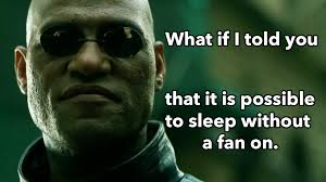 Sleep Meme - morpheus meme sleep without the fan