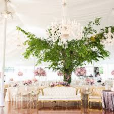 wedding trees 8 creative ways to use trees in your wedding brides