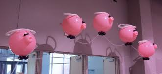 pig balloons needs a run flying pig the pre race report