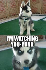 I M Watching You Meme - meme creator i m watching you punk
