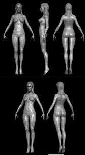 3d Human Anatomy 17 Best Images About 3d On Pinterest Models Artworks And Wireframe