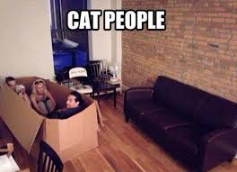 Sitting Meme - cat people sitting inside the box the couch came in justpost