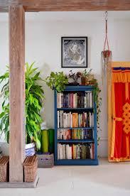 gypsy yaya indoor jungle secret garden apartment in brooklyn