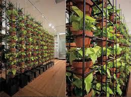 a starter guide to urban gardening inhabitat green design