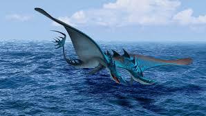 seashocker explore how to train your dragon