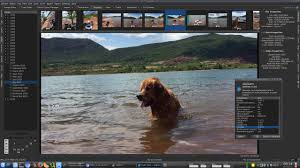 12 free alternative image and photo organizer for microsoft windows 10