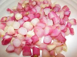 cuisiner les radis roses fricassée de radis roses chez dodie