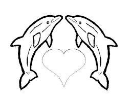 les 25 meilleures idées de la catégorie dauphin dessin sur