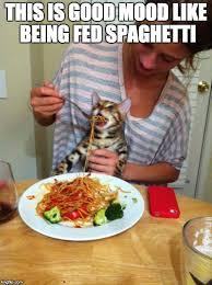 Spaghetti Meme - spaghetto imgflip