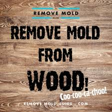 remove mold from wood 2014 guide to mold removal