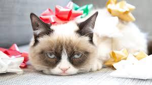 cat christmas 12 days of grumpy cat christmas comics 3 a 3d magic eye book