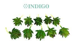 popular artificial greenery wholesale buy cheap artificial