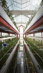 225 best commerce bio images on pinterest urban farming urban