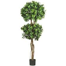 topiaries the home depot