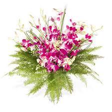 orchid flower arrangements singapore orchid arrangement orchid flower arrangement flowers