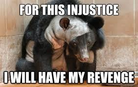 Revenge Memes - for this injustice i will have my revenge revenge bear quickmeme