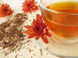 13 amazing benefits of red rooibos tea organic facts