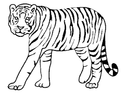 tiger shape template crafts