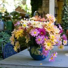 mums flower thank you mum flower magazine