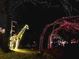 Zoo Lights Address by Lincoln Park Zoo Lights A Chicago Winter Must Do Nom And Play