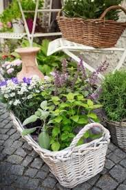 Potted Herb Garden Ideas Designing A Herb Garden