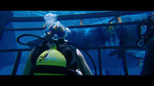 150 Ft In Meters 47 Meters Down 2017 Imdb