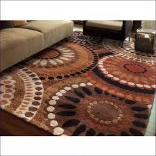 Modern Area Rugs Canada Excellent Furniture Marvelous 2x4 Area Rugs Canada Floral