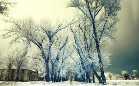 Winter Houses by Winter Sky Nature Armenia Snow Park Beautiful Houses Trees Winter