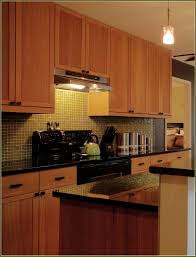 Almond Kitchen Cabinets Discontinued Kitchen Cabinets Alkamedia Com