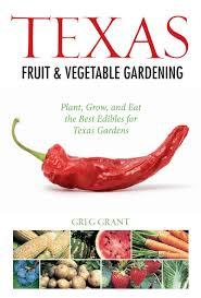 what to grow in a vegetable garden fall winter vegetables john dromgoole central texas gardener