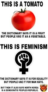 Tomato Meme - i say tomato you say feminism is cancer let s call the whole