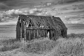 shack shack tau zero