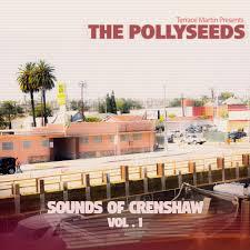 Soothing Vibe Stream Terrace Martin U0026 The Pollyseeds U0027 U0027sounds Of Crewnshaw Vol 1
