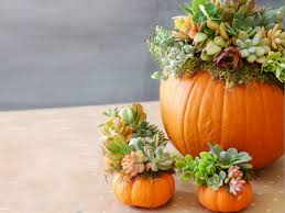 Craftcuts by Fall Thanksgiving Ideas To Gather Around Craftcuts Com