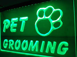 Neon Sign Home Decor Online Get Cheap Cat Neon Sign Aliexpress Com Alibaba Group