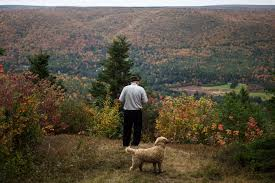 thanksgiving for job offer a remote job comes with free land and a sense of community 50 000
