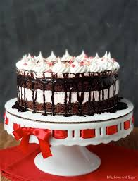 peppermint brownie ice cream cake life love and sugar