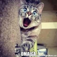 Omaiga Meme - omaiga meme de gato asombrado imagenes memes generadormemes