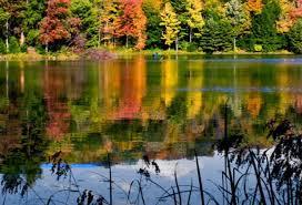 Fall visitpa