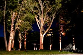 Outdoor Up Lighting For Trees Lighting Outdoor Trees This Boxford Familyu0027s Driveway Is Now
