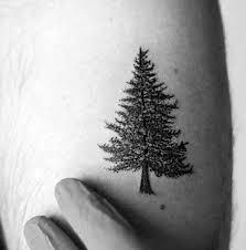 black pine tree idea