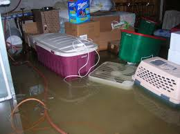 oh no the basement is flooded don u0027t get electrocuted