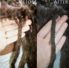 hairstyles after dreadlocks interlocking dreadlocks and alternative hairstyles raging roots