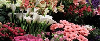 order flowers online margaret florist order online 01772 253858
