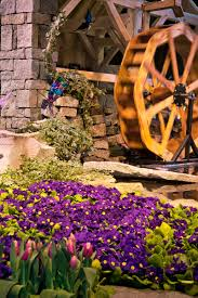 boston flower u0026 garden show gardens