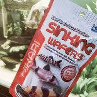 hikari sinking wafers review hikari sales hikari tropical sinking wafers for catfish loaches and